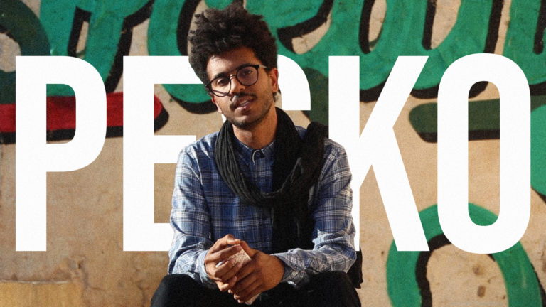 Breakreatin'Walls: Meet PESKO